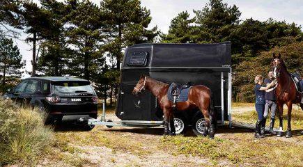 paardentrailer met paard en trekhaak