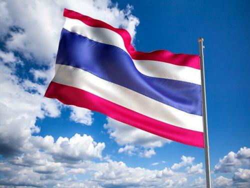 2020 - Professionnalisation du site de production en Thaïlande